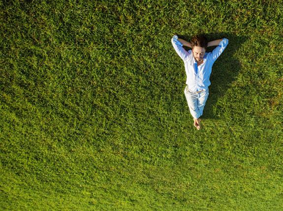 entretien espaces verts et abords